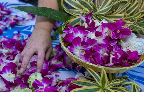 Welcome To Kohea Kai Hotel - Hawaiian Lei