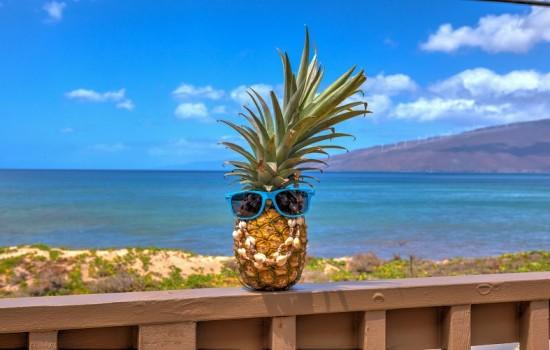 Welcome To Kohea Kai Maui - Aloha!